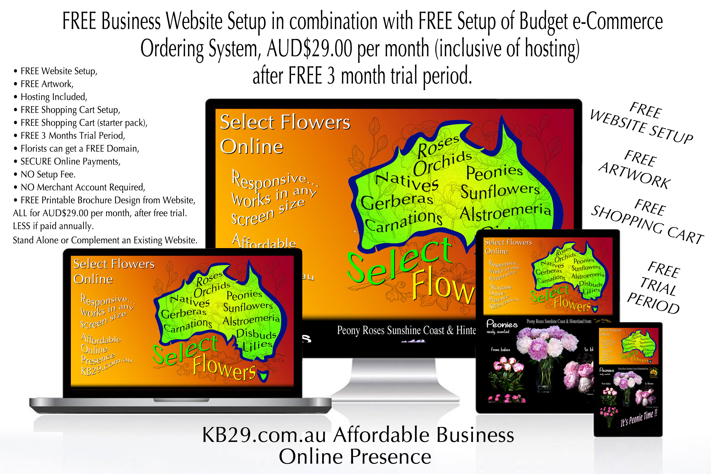 FREE WEBSITE and ONLINE SHOPPING SETUPS with KB29